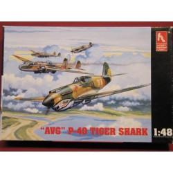 P-40 AVG