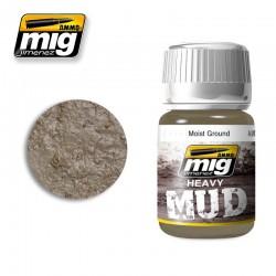 MOIST GROUND